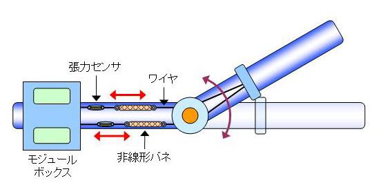 module_image_1.jpg
